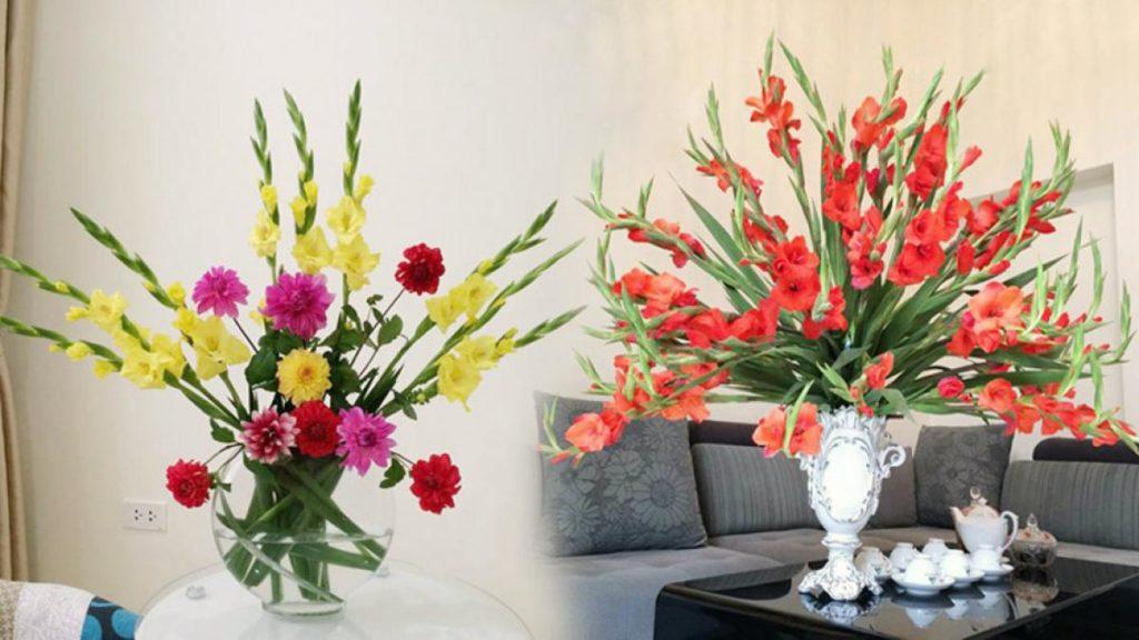 Hoa Lay ơn ngày tết